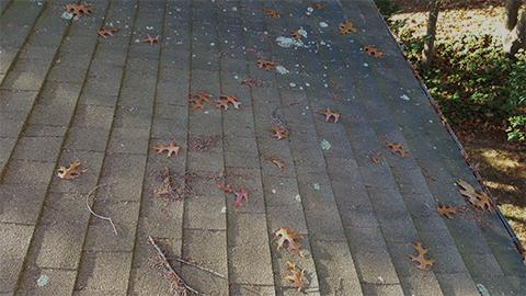 20151117 094809 roof with debris prior to cleaning small