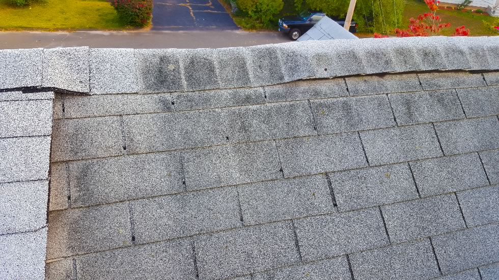 Roof Cleaning East Haven