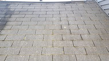 Take a look at the top left to see the contrast between treated and untreated roof