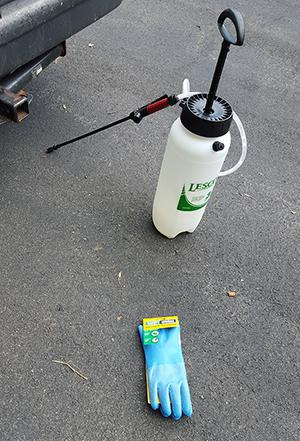 20150629 130142 sprayer and gloves small