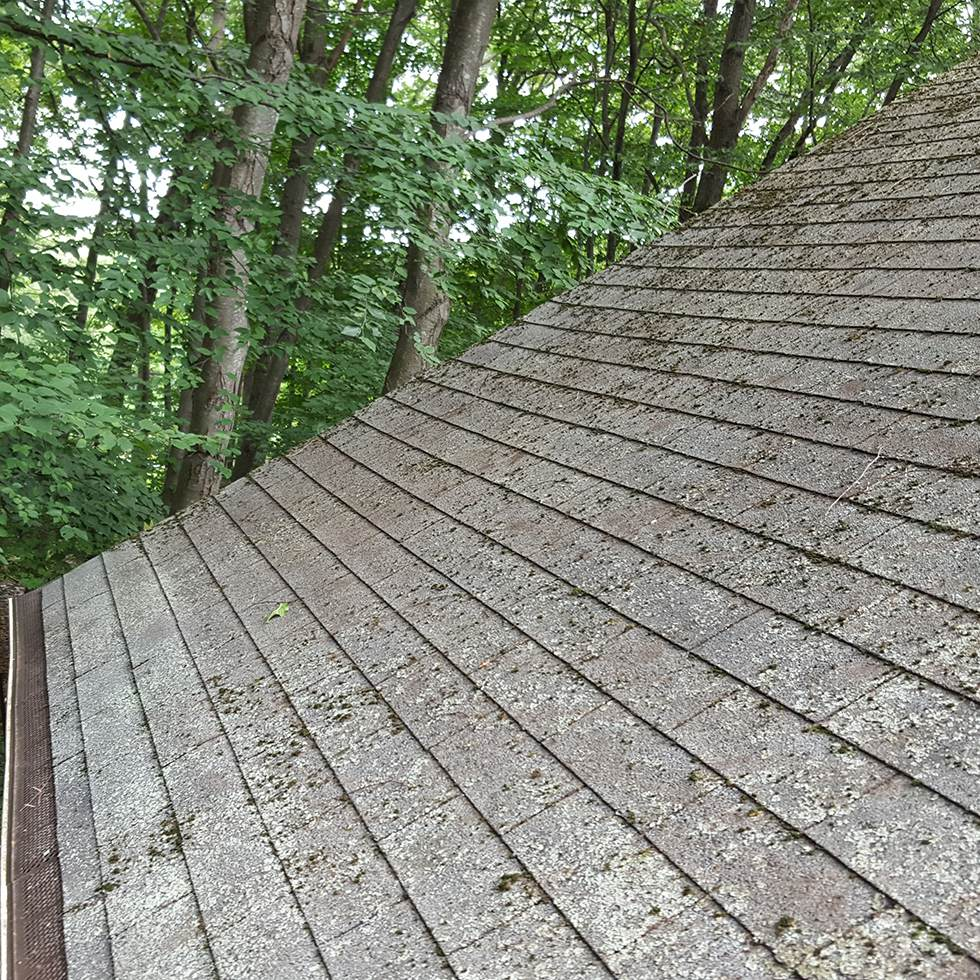 Roof Cleaning Connecticut Soft Wash Cleaning Professional